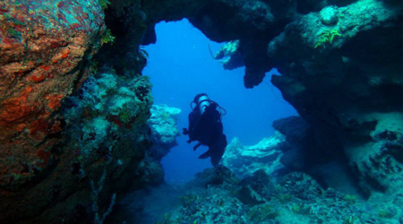 PADI Open Water Diver Certification Course